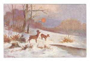 Artist Signed Deer Winter Wooded Scene W.R.B. & Co Vienne Serie 22 - 47 Postcard