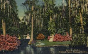 Reflection Pool Cypress Gardens FL Unused