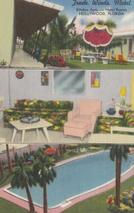 HOLLYWOOD, Florida, 1930-40s; Trade Winds Motel, Lawn Area, Guest Room and Sw...
