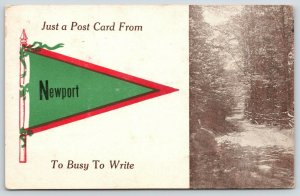 Just a Card from Newport Vermont~Too Busy to Write~Narrow Trail~1913 Pennant
