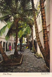 St Thomas CHarlotte Amalie Palm Passage Shopping Alley