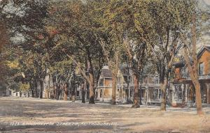 Keithsburg Illinois~10th & Washington Street Homes~Shade Trees~Dirt Road~1912 PC