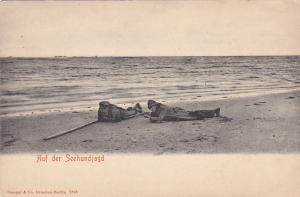 Seal Hunters on beach w/ gun , Auf der Seehundjagd , 00-10s