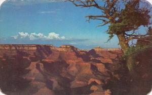 Arizona Grand Canyon Sunset At The Grand Canyon