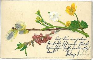 VINTAGE POSTCARD: FLOWERS 1908