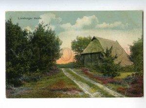 241256 GERMANY LUNEBURGER HEIDE Vintage postcard
