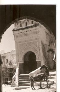 Postal 035949 : Puerta Ceuta - Tetuan
