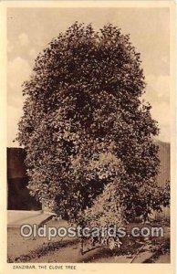 Zanzibar The Clove Tree Unused