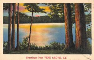 Vine Grove Kentucky Greetings From sun rising on lake antique pc Z43828