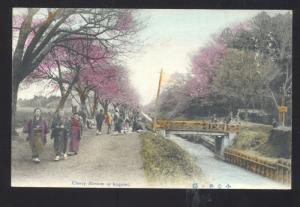 KOGENAI JAPAN JAPANESE CHERRY BLOSSOMS VINTAGE COLOR POSTCARD