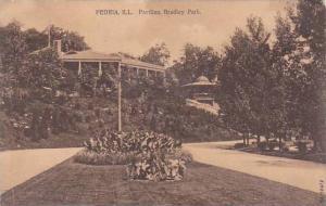 Illinois Peoria Pavilion Bradley Park 1910