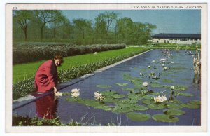 Chicago, Lily Pond In Garfield Park