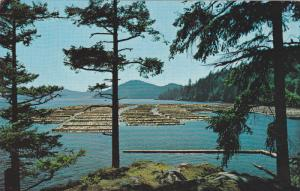 Log Booming Grounds, VANCOUVER, British Columbia, Canada, 40-60´s