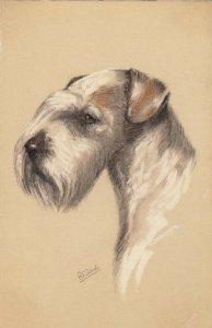 AS: Portrait of Sealyham Terrier, 1900-10s