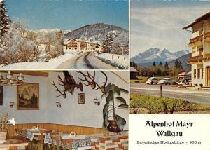 Alpenhof Mayr Wallgau Bayerisches Hochgebirge Auto Cars Pension Panorama