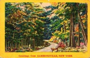 New York Greetings From Sammonsville