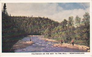 NEWFOUNDLAND, Canada, 1940-1960's; Pulpwood On The Way To The Mill