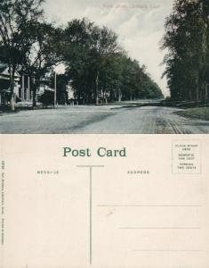LICHFIELD CT NORTH STREET ANTIQUE POSTCARD