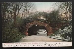 Driveway and Path in Prospect Park Brooklyn NY 1905 Souvenir Post Card Co