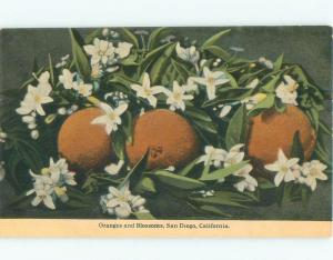 Divided-Back CALIFORNIA ORANGES WITH BLOSSOMING FLOWERS San Diego CA E9628