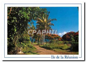 Modern Postcard Reunion Island Coconut Sainte Marie
