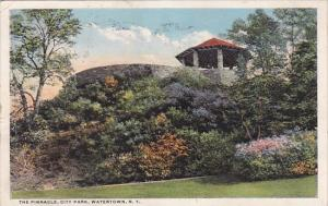 New York Watertown The Pinnacle City Park 1916