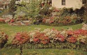 Mississippi McComb Beautiful Flower Garden