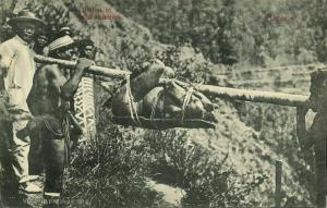 philippines, Native Cannibals with Prey, Head Hunter (1910s) Postcard