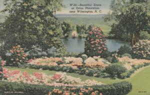 Gardens at Orton Plantation - Wilmington NC, North Carolina - Linen