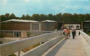 Mammoth Cave National Park KY~White Footbridge to Visitor Center~1950s Postcard