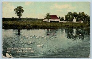 Postcard DE Wilmington Delaware Lake Shellpot Park c1910 X5