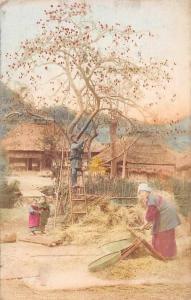 Japan Village Houses, Cottage Native People Working