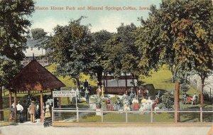 LPS72 COLFAX Iowa Mason House Park and Mineral Springs Postcard