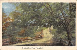 Potter Place New Hampshire Greetings Road Scenic Vintage Postcard JD933749