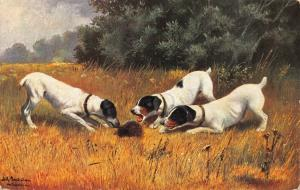 FOX TERRIERS HAVE ANIMAL SURROUNDED -1910s GERMAN ARTIST POSTCARD
