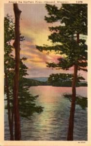 Wisconsin Greetings From Hayward 1943 Curteich