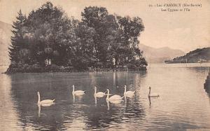 France Lac d'Annecy (Hte-Savoie_ Les Cygnes et l'Ile Lake Birds