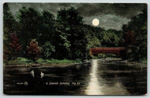 Troy New York~Oakwood Cemetery @ Night~Full Moon Over Bridge~Swans~1909 Postcard