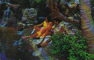 Florida Cape Coral Cape Coral Gardens