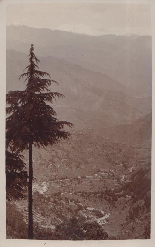 Dalhousie Club Vintage Real Photo Postcard