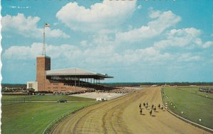 New Jersey Atlantic City Race Course Horse Racing sk7536