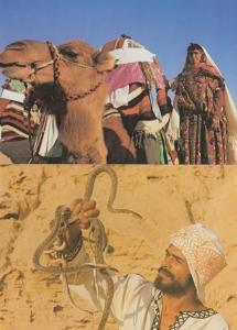 Tunisia Snake Charmer Camel Marriage 2x Postcard s