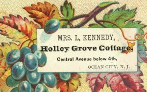 1880's Mrs. L. Kennedy Holley Grove Cottages Ocean City NJ Grapes Leaves P153