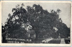 Constitutional Elm, Corydon, Indiana - only the stump is left today z5