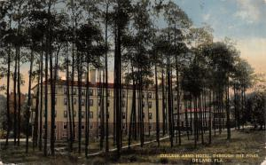 Deland Florida~View of the College Arms Hotel Peeking Thru Trees~Gone! c1910