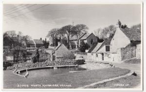Dorset; Worth Matravers 27359 RP PPC By Judges, 1966 PMK, Shows Village Pond