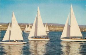 Newport Harbor California~Sailing Sailboats On Newport Bay~1950s PC