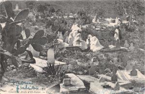 ALGER ALGERIA CIMETIERE ARABE d'EL KATAR POSTCARD c1905