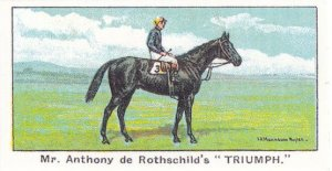 Triumph Winners On The Turf 1923 Goodwood Cup Horse Racing Cigarette Card
