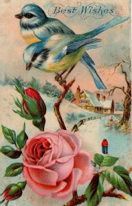 US    PC1179 BEST WISHES - BIRDS AND FLOWERS